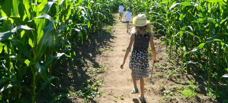 pop-corn-labyrinthe-slide