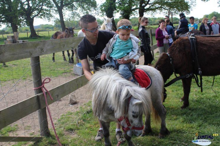 Balade à poney au Camping de l'Etang