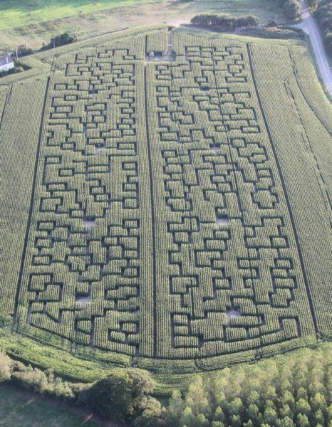 Labyrinthe de maïs en Loire-atlantique