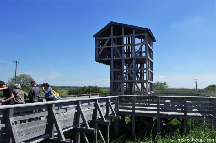 Observatoire de Kawamata